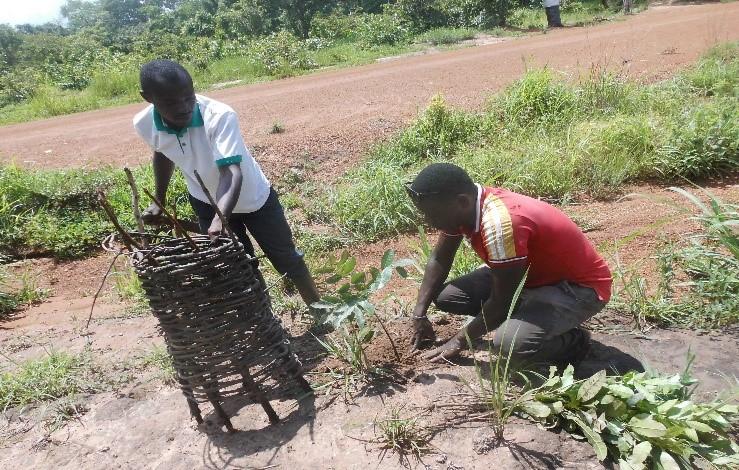 Reboisement d'une forêt communautaire